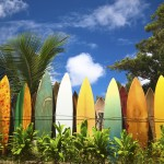 Surfboard fence with personality