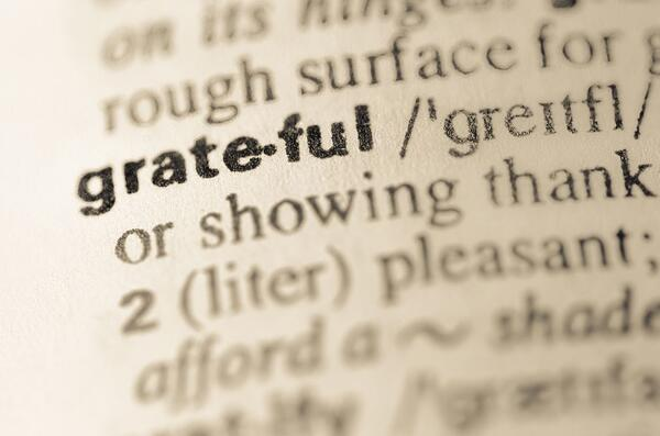 Dictionary meaning of grateful