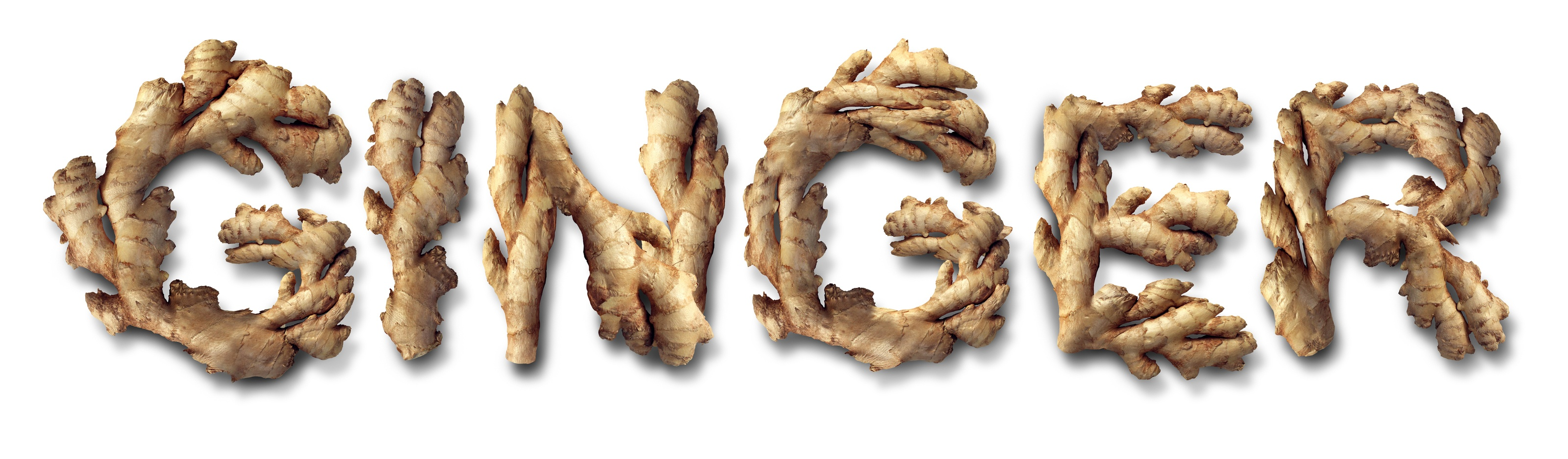 Ginger root ready for pressing into essential oils
