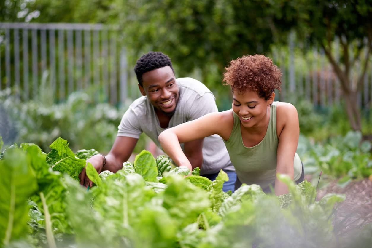 Couple gardening together during quarantine
