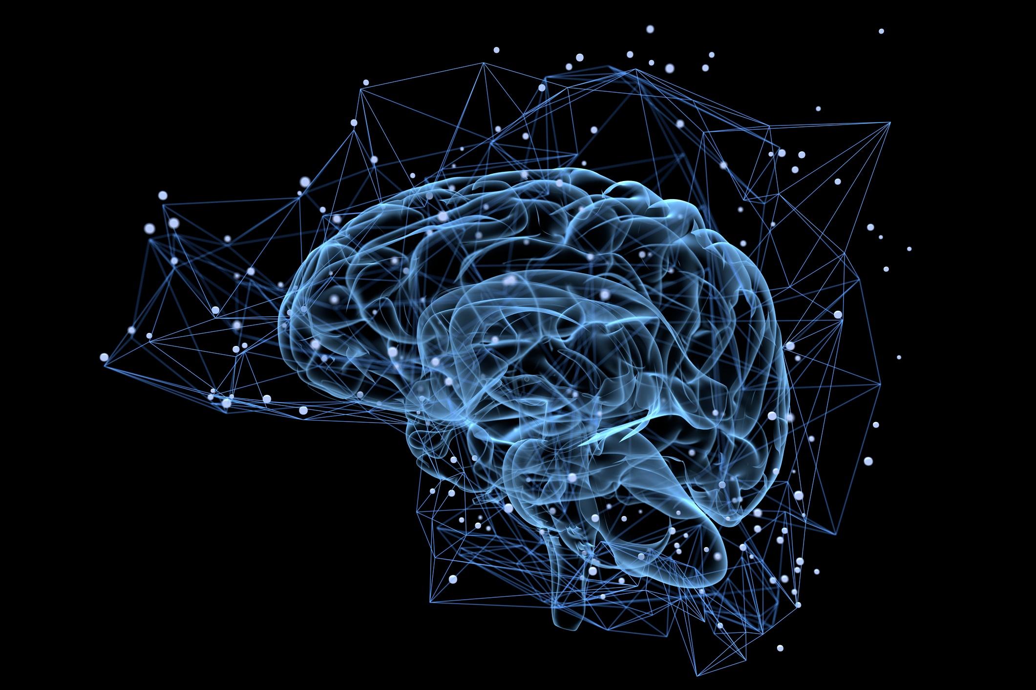 Brain-activity-497487570_2125x1416.jpeg